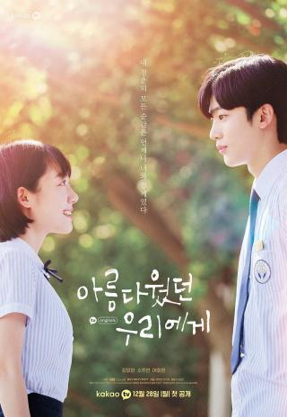 Poster A Love So Beautiful