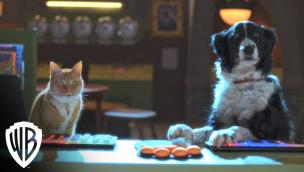 Trailer Cats & Dogs 3: Paws Unite